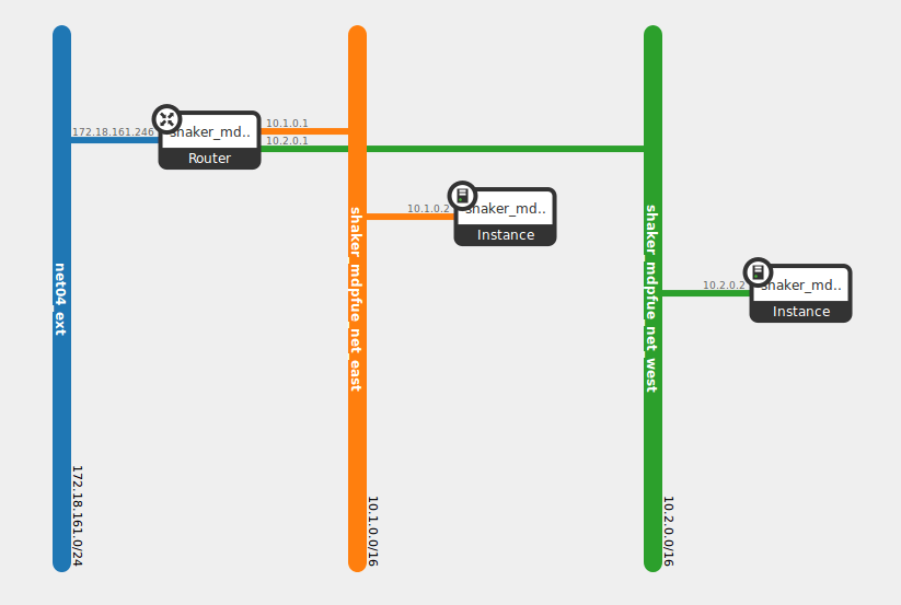 diagram depicting a pair instances in two different networks