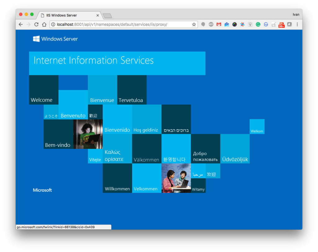A screenshot of Windows Server IIS